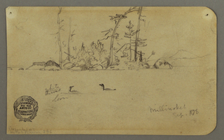 Drawing, Island, Two loons, 1878