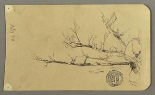 Drawing, Trees, boulders, 1878