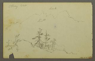 Verso: Pine Trees on Hillside