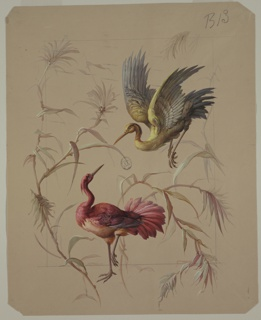 Two birds surrounded by branches with leaves. Red bird stands on ground with one leg lifted facing top right, blue and green bird is flying downward, facing bottom left.