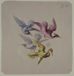 Group of four birds in flight, wings spread all in profile. From top to bottom, and left to right: blue-gray bird facing right, maroon bird facing right, white bird facing left, yellow bird facing left and downward.
