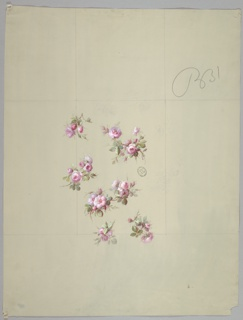 Seven varying clusters consisting of pink roses, rosebuds, stems and foliage, not evenly spaced. Vertically rectangular guidelines in graphite visible.