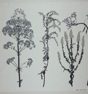 Textile, Kettulaakso, 1979
