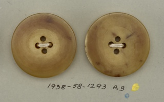 Two circular beige to tan buttons; each with four holes.