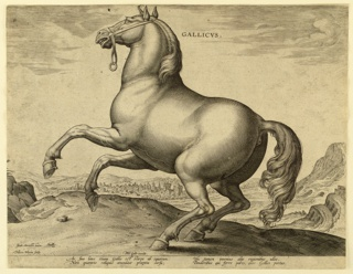 """Print, A French Horse, from the first set of """"Equile Joannis Austriaci"""", ca. 1575"""