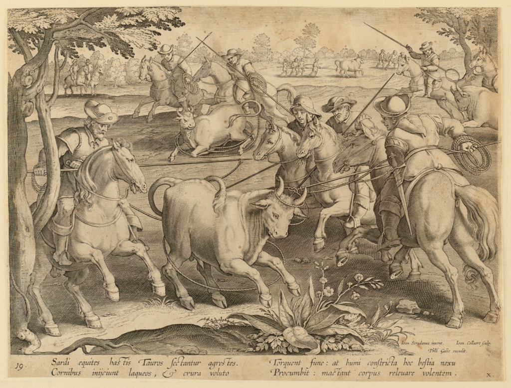 "Horizontal rectangle. Hunters on horseback lasso a bull, foreground, with the performance repeated in the background. At lower right: ""Ioan. Stradanus invent. / Ioan. Collaert Sculp. / Phls. Galle excudit."" Below: ""SARDI EQUITIES HAS TIS TAUROS SECTANTUR AGRESTES."""