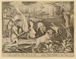 "Horizontal rectangle. The lions, frightened by the lighted torches carried by the hunters, are forced into the string of nets set up to trap them, right. At lower left: ""Ioan. Stradanus invent."" Right of center, below: ""Ioan. Collaert Sculp.""; at lower right: ""Phls Galle excud."" Below: ""AS TU QUI SATAGUNT VALIDUM ILLAGUEARE LEONEM..."""
