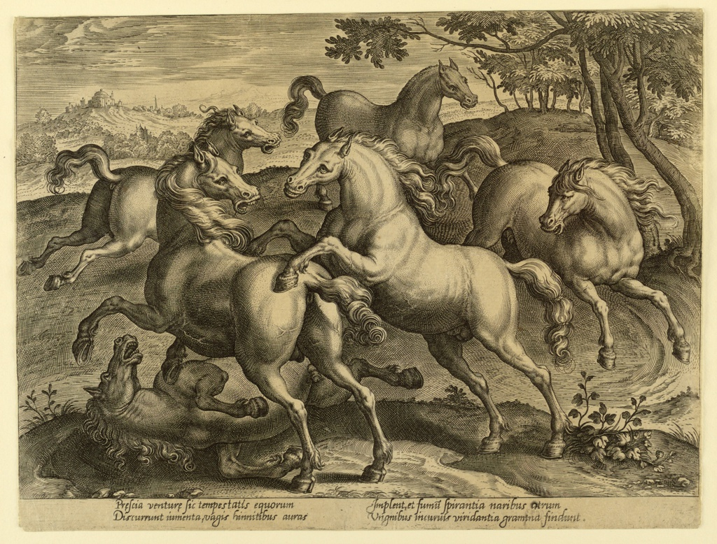 """Two horses fight with each other; a third one lies on the ground. Three are running. Bottom margin, similar -92: """"Prescia venturae sic tempestatis equorum,"""" etc."""