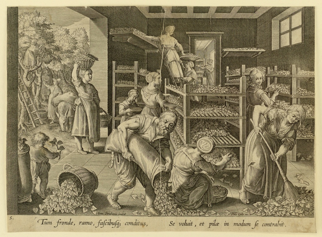 Woman busily spreading leaves on the tiers of trays, right.  Through the open door, left a view showing women gathering mulberry leaves from the trees.  A man, in center foreground, empties a sack of leaves on the floor.