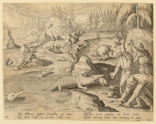 "Horizontal rectangle. Crocodiles are baited by pigs, caught in the act of devouring the small animals tied up close to the edge of the beach.  The crocodiles, unable to retreat easily, are stoned by men, waiting for them on the beach. At lower left: ""Ioan. Stradanus invent.""; center: ""Ioan. Collaert sculp""; near lower right: ""Phls Galle excud."""