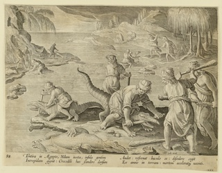 "Horizontal rectangle. The jaws of the crocodiles are pried open and a stick inserted to render them helpless while they are clubbed to death. At lower right, in the foreground, one man sits astride a crocodile, holding the stick in place, while two others prepare to use their clubs. Near lower right: ""Ioan. Stradanus / invent..Carolus de / Mallery Sculp.; Phls Galle excud."" Below: ""TENTIRA IN AEGYPTO..."""