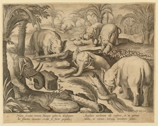 """Horizontal rectangle. An elephant is trapped in a deep pit, in the middle ground. Other elephants carry stones and tree trunks in an effort to rescue him. Inscribed on stone, near left center: """"Ioan Stradanus invent. / Ioan Collaert Sculp."""" At lower right: """"Phls Galle excud."""" Below: HUNC SERVANT MOREM NATURAE INSTINCTII ELEPHANTIS..."""