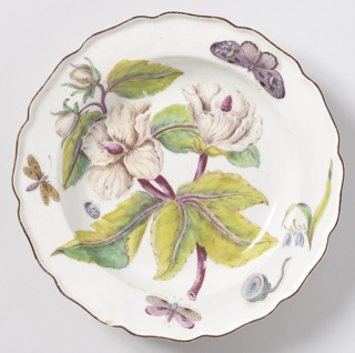A plate with a wavy, brown-edged rim painted with a large spray of the leaves, flowers, and buds of a hibiscus (Ketmia syrorum), with a seed pod and various insects.