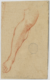 Frontal depiction of a leg from just above the knee to the foot; verso: head of a bearded man.