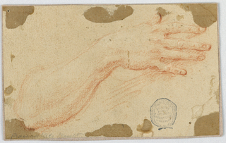 Study of the lifted right forearm and hand of a woman with her figers spread slightly.