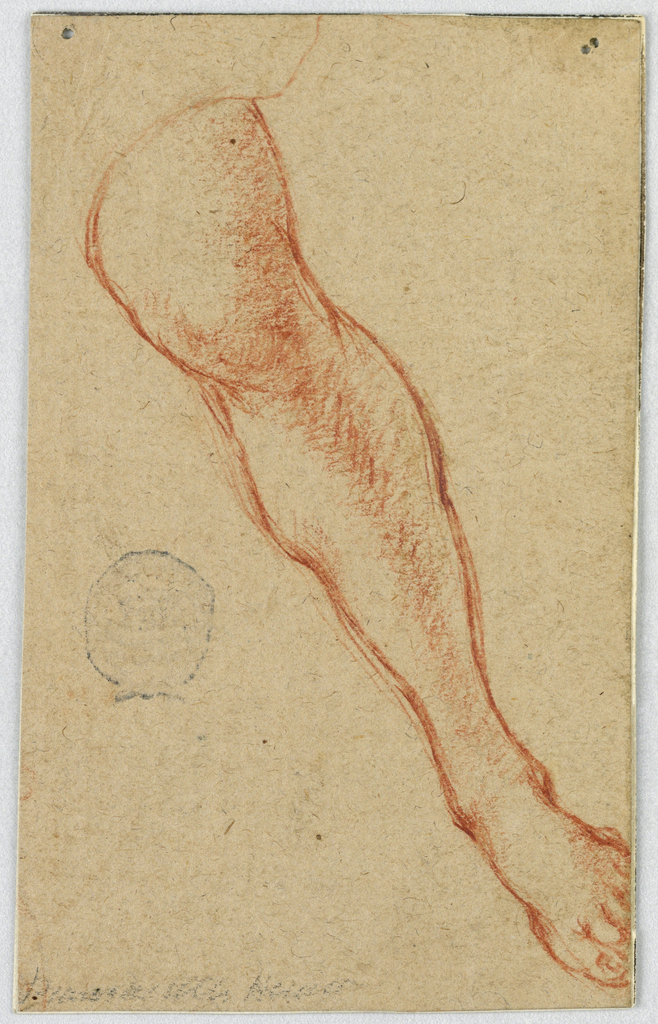 Left leg depicted from the front and slightly above from just above the knee to the end of the foot.  Leg is angled toward lower right corner of paper. Verso: sketch of a bearded man's head and the strokes of another sketch.
