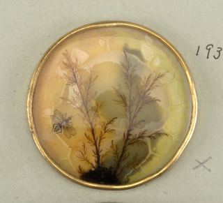 two branches with leaves and a fly painted on glass, mounted in copper and backed with tin.  On card 69