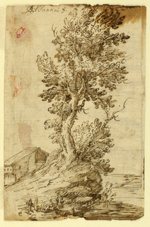Vertical rectangle showing a tree growing on an outcrop with a peasant's dwelling at left.