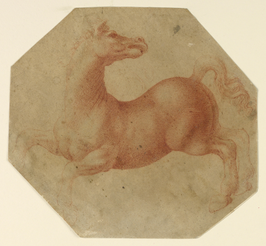 """After Leonardo da Vinci: Study of a horse rearing to the left; the horse's head and neck are twisted backward, toward the right, in the direction of the flying tail.  The volume of the horse's body is carefully rendered in light and shade; the lower part of the horse's legs is only partially indicated. The drawing appears to be a copy of the original Leonardo drawing in the Royal Collection, Windsor Castle (England): Study for the """"Battle of Anghiari"""" (Royal Collection #12334)."""