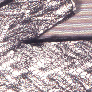Mitt of very fine black silk knitted lace.
