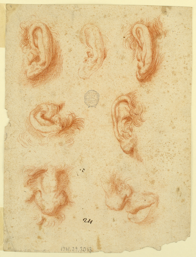 Vertical rectangle; A) Top row: studies of three left ears, the central one being unfinished. Central row, at left: study of the upper left part of a right ear; at right, study of a right ear. Bottom row: at left, study of a man's nose viewed from the front; at right, a study of the lower part of the nose and mouth of a man, turned toward right, shown in profile.