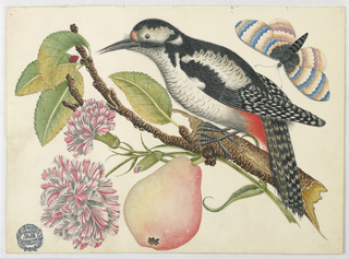 Bird perched on branch which bears a pear, red and white blossoms, and leaves with a ladybug. Butterfly in upper right corner.