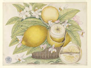 Basket filled with lemons and their leaves and blossoms; one lemon partially peeled, a wedge sitting on the ground.