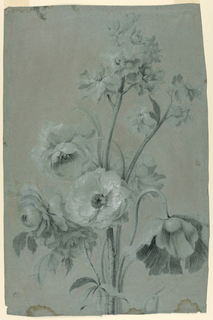 A bunch of stems, with six large blossoms and leaves in the bottom part and small sized blossoms in the top part.