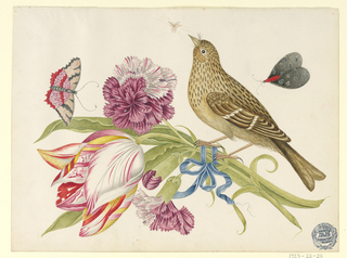 Bouquet of two carnations and a tulip bound by a blue ribbon; bird perched on tulip; butterflies and insect fly above.