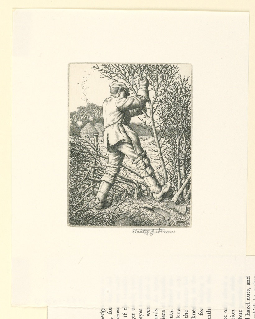 Print, Hedge-laying
