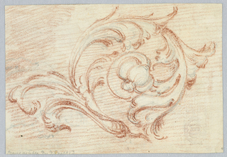 A blossom is at the end. The background is hatched. On the reverse, a part of the pencil sketch, perhaps of an engine.