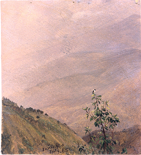 A bird is seated on top of a tree in the right foreground.  Parts of mountains are shown at left and in right background.