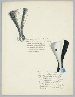 Two biomorphic bone shapes, each accompanied by text in black ink.
