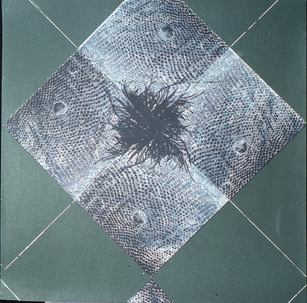 Diamond-shaped design with patch of grass at center, wart in outer corners. Printed in black on deep green ground.
