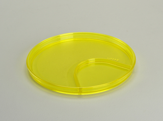 Transparent fuschia plate with lip