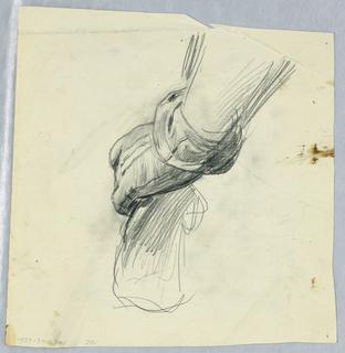 Drawing (SPAIN & U.S.)
