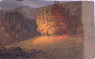 Horizontal drawing of autumn foliage bathed in the light of an afternoon sun.  Mountains in the background.  Unfinished along right margin.  Possibly made during Church's sojurn in Vermont, October, 1865.