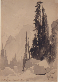 Vertical view of large boulders in foreground with tall pine tree in middle ground followed by mountains leading to large mountain dome in background.