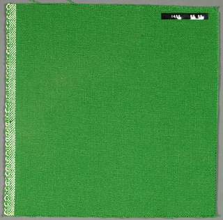 Plain weave with green warp and weft. Heavy nylon yarns give a coarse surface texture.