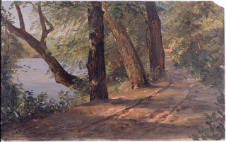 A wooded slope in hilly country with water at left middle distance.  A road and two trees at right.