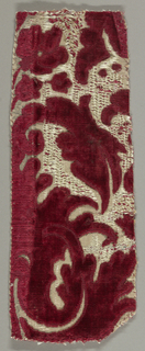 Fragment of a much larger pattern showing part of a floral spray in red cut and uncut pile on white.