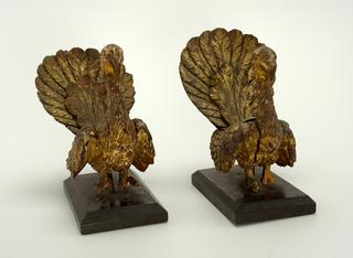 Peacock (Italy)