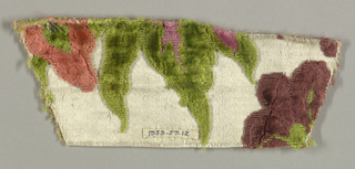 Small and very incomplete fragment with a white satin ground and large-scale floral design in salmon, pink, maroon, and green cut and uncut pile.
