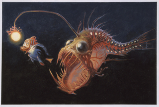 Concept Art, Anglerfish, Finding Nemo, 2003