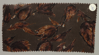 Dark brown ground has an allover floral pattern with short stems and leaves in shades of dark and light brown with flecks of white.
