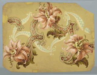 Drawing, Stylized flowers and scrolls