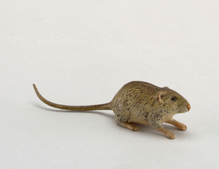 rat Miniature