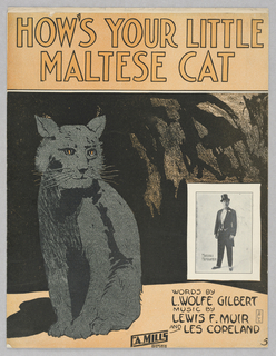 Sheet Music, How's Your Little Maltese Cat, 1913