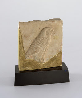 Relief carving of pink limestone, a falcon of Horus faces right. Detailed feathers on wing, leg and remaining portion of tail. Plaque broken along lower and left side, replaced with plaster. Attached to wooden base painted black.