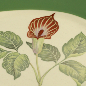 Slightly squared shape, green rim; center with printed decoration of jack-in-the-pulpit in shades of green and red-brown.